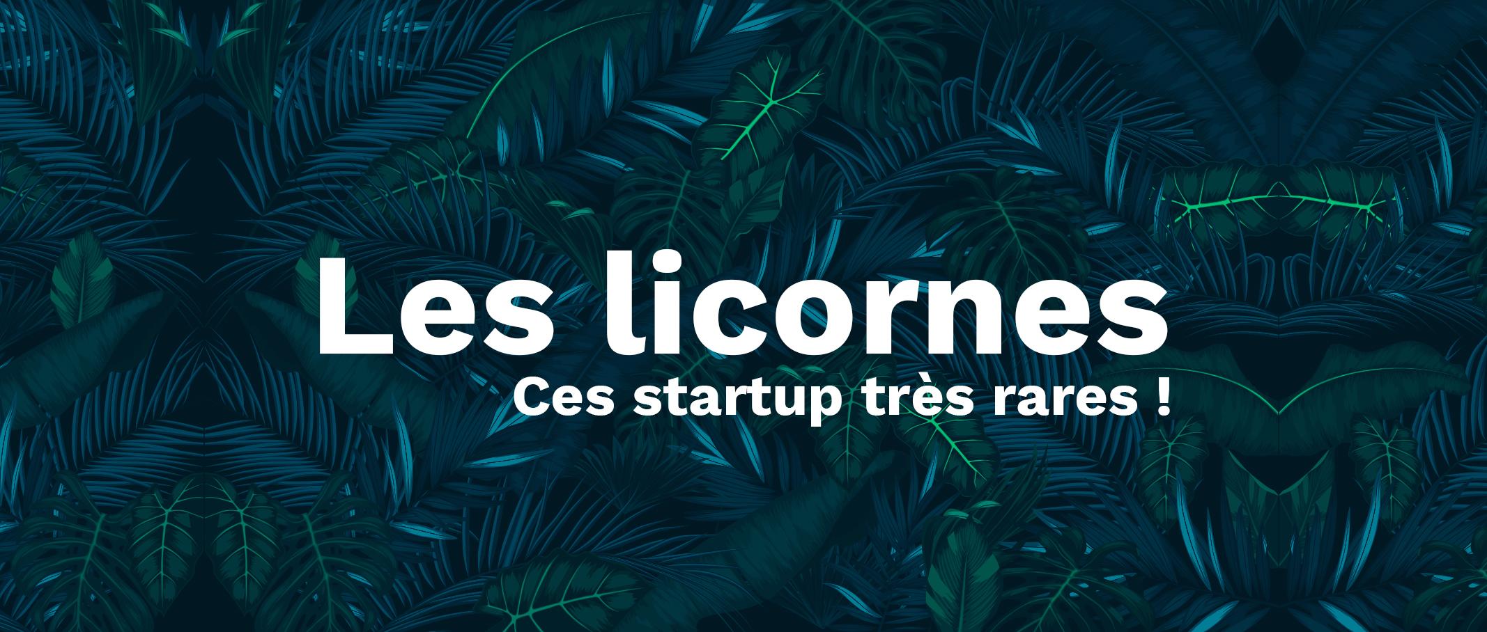 Les licornes - Ces startup très rares